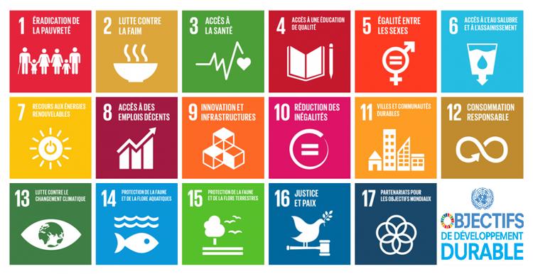 Semaine européenne du développement durable : contribuez à la transition écologique et solidaire
